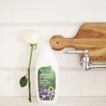 Non-Toxic Kitchen Cleaners